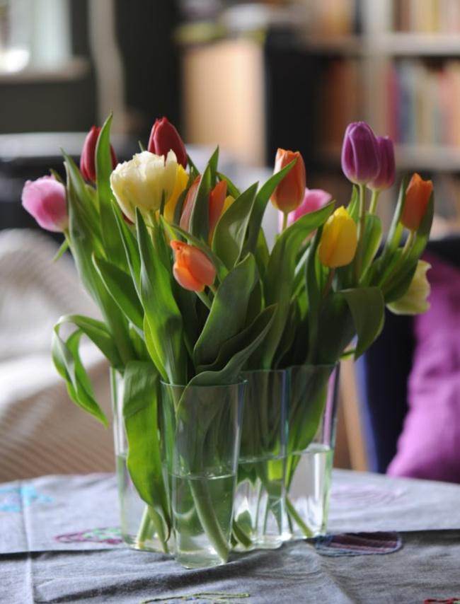 Få mest muligt ud af afskårne tulipaner