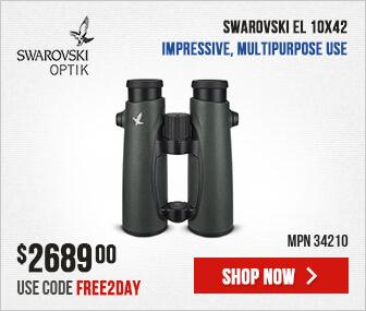 34210-Swarovski