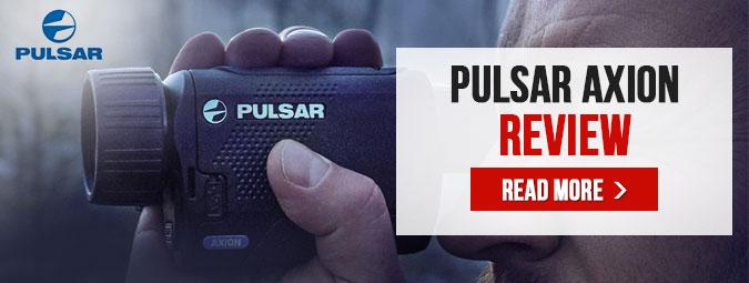Pulsar Axion Review