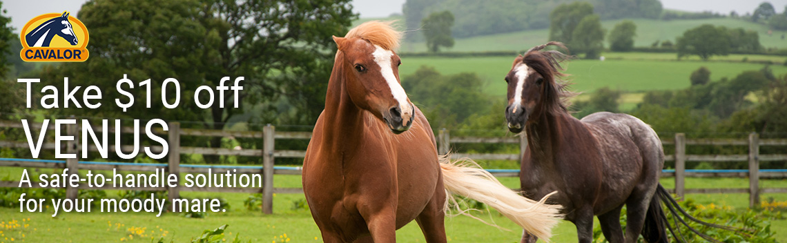 Sale on Venus for Horses
