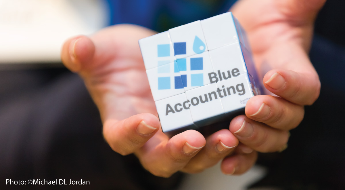 Blue Accounting