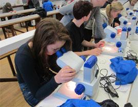 Millport Students