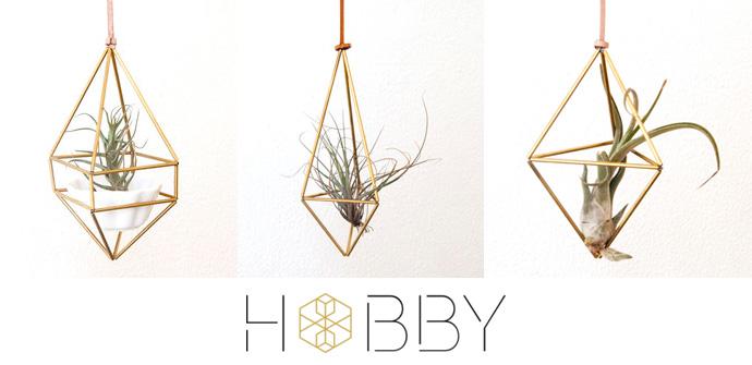 Hobby. Brand new on Hello Pretty