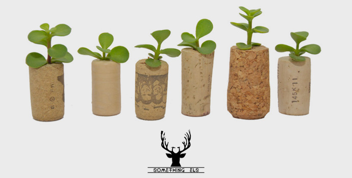 Mini Cork Fridge Magnet Plants by Something Els