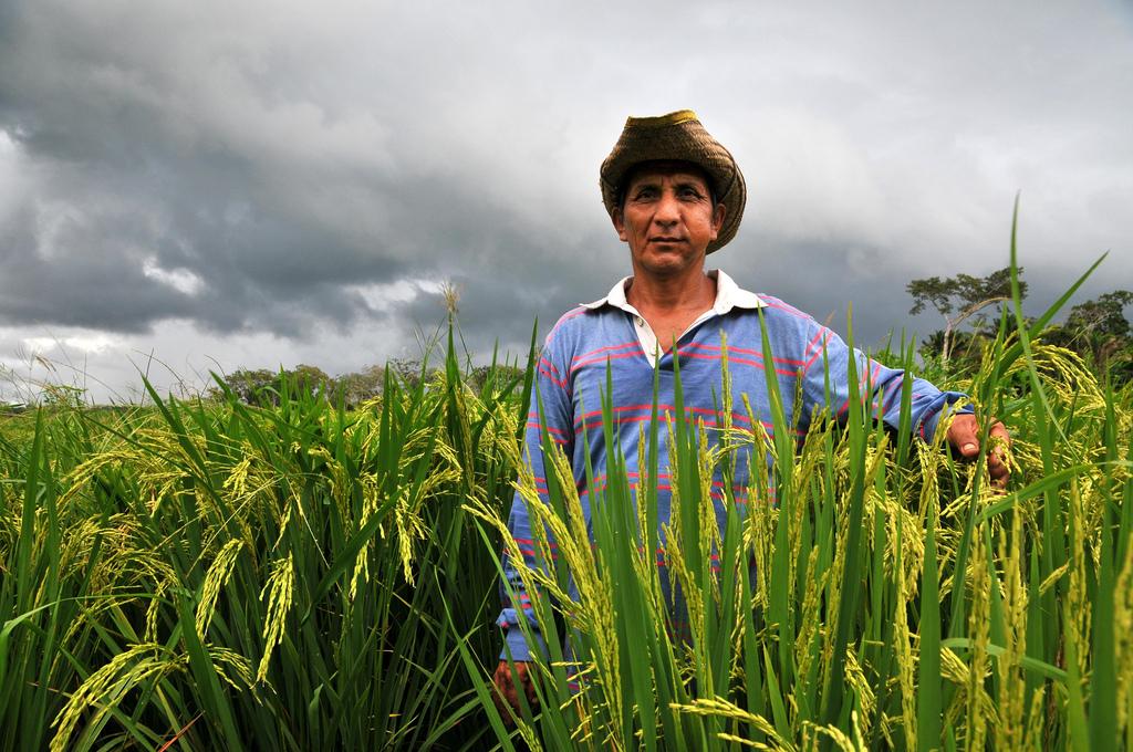 bolivian-farmer