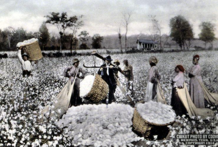 slave plantation