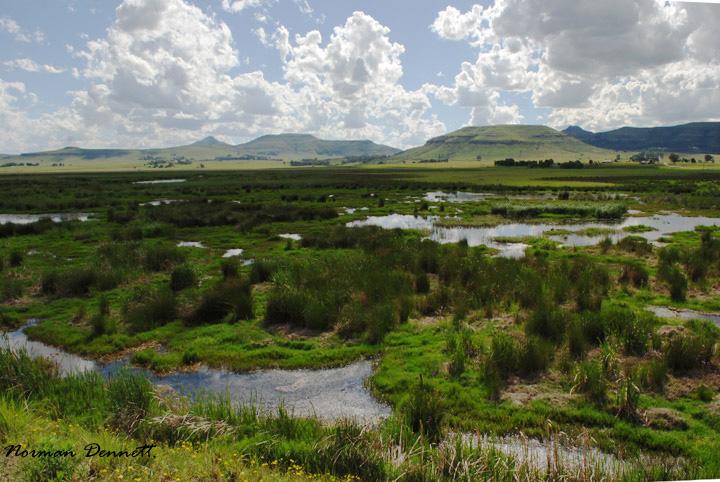 mabola-wetlands