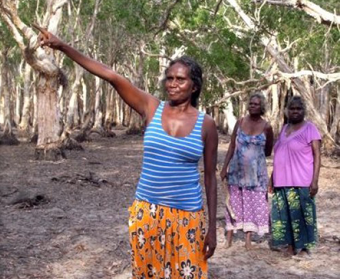 Help build a house to continue to assist Yolngu entrepreneurs in East Arnhem Land