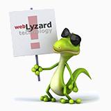 webLyzard Release History
