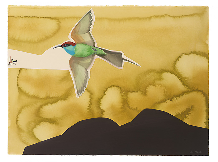 Blue Throated Bee Eater, 2012, 22x30 watercolor and gouache on papee