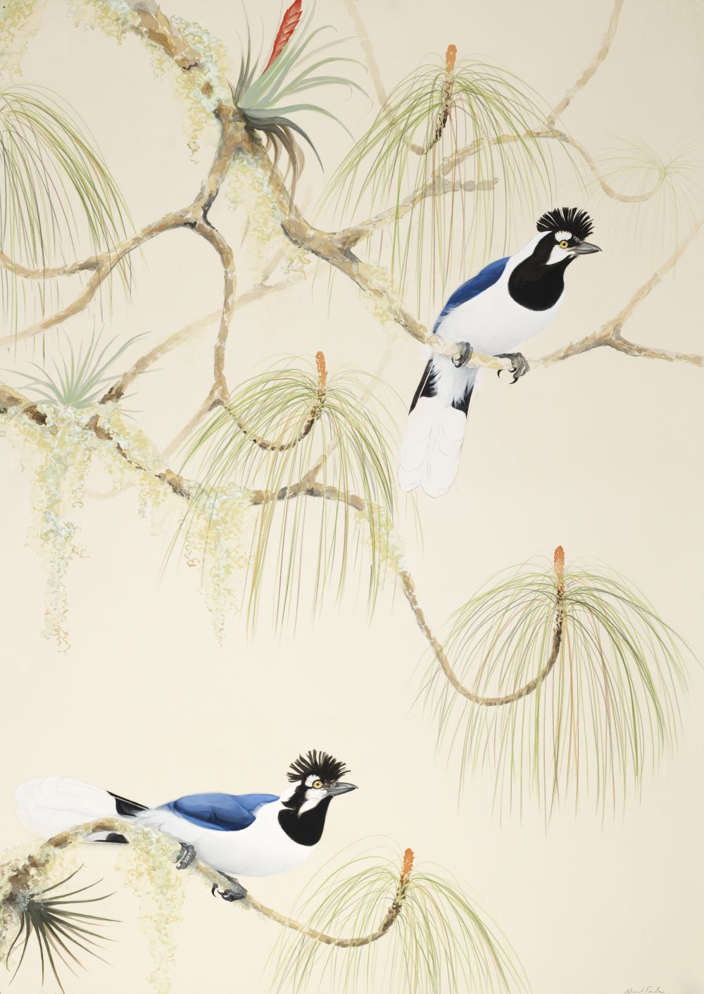 Tufted Jays, 2008, 44x30, gouache, watercolor, colored pencil and graphite on paper
