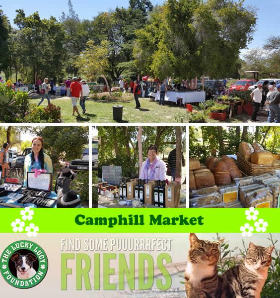 Camphill Village Country Market - November 2016