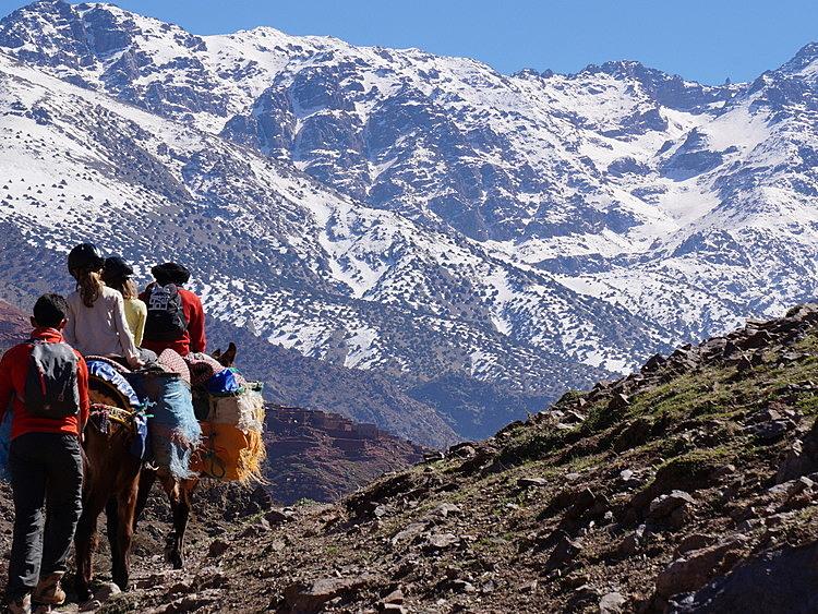 Marrakech & Mountains Family Trek
