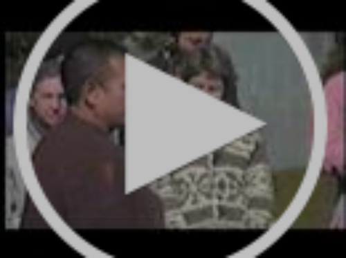 Walking Meditation with Thich Nhat Hanh