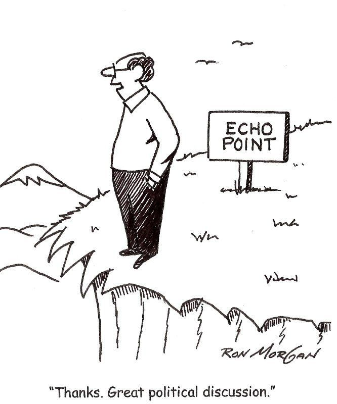 cartoon of a man standing alone at the edge of a cliff next to a sign that says Echo Point. The caption reads, Thanks. Great political discussion.