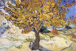 Credit: Vincent van Gogh, public domain