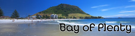 Bay of Plenty News