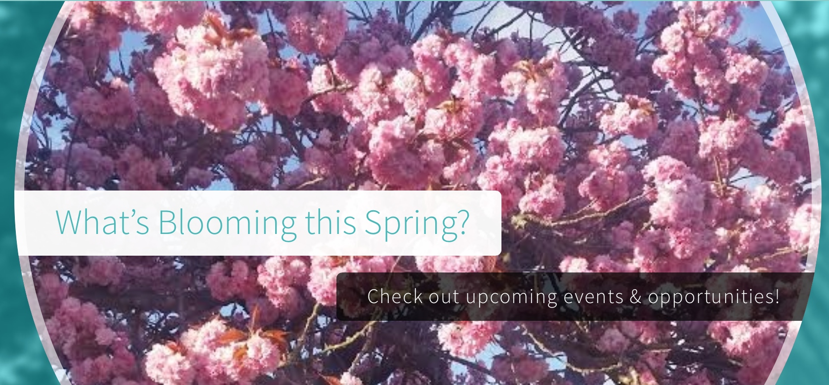 What's Blooming this Spring? Check out our upcoming events.