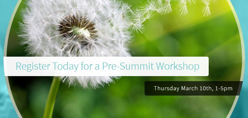 Pre-Summit Workshop Registration