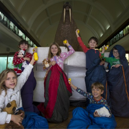 Children in sleeping bags by the Walrus