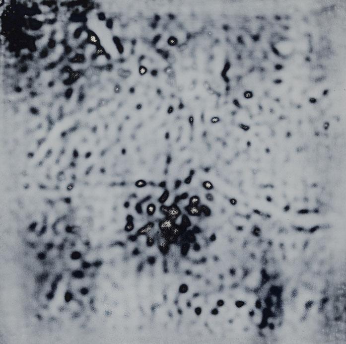 royalbloomlaqueacryliquesurtoile255x255cm.jpg