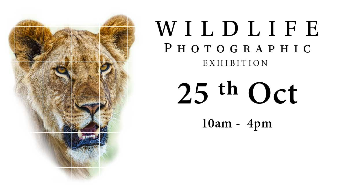 Click here to get more details of our Exhibition