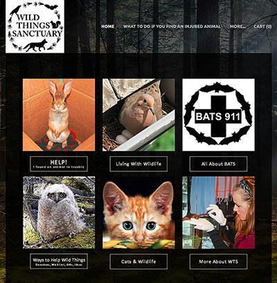Wild Things Sanctyary new website homepage
