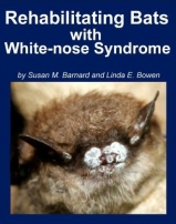 Manual for Rehabbing Bats in the face of WNS