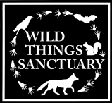 Happy New Year Wild Things!