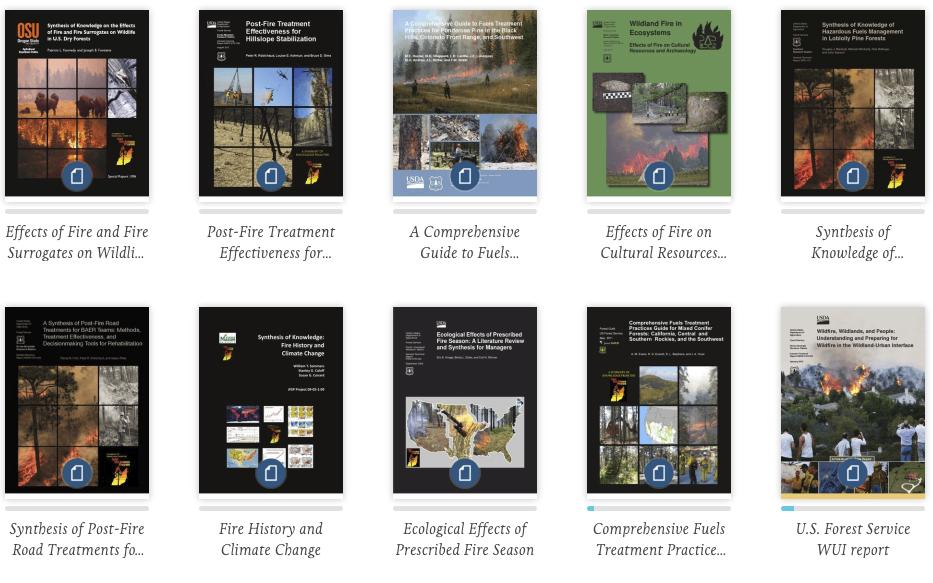 Screen capture of JFSP Publications on scribd.com
