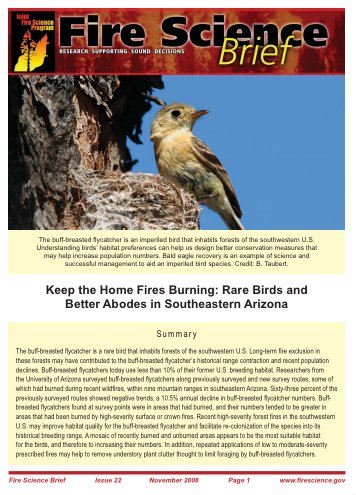 Rare Birds and Fire in Arizona - Fire Science Brief