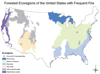 Map of ecoregions included in the study