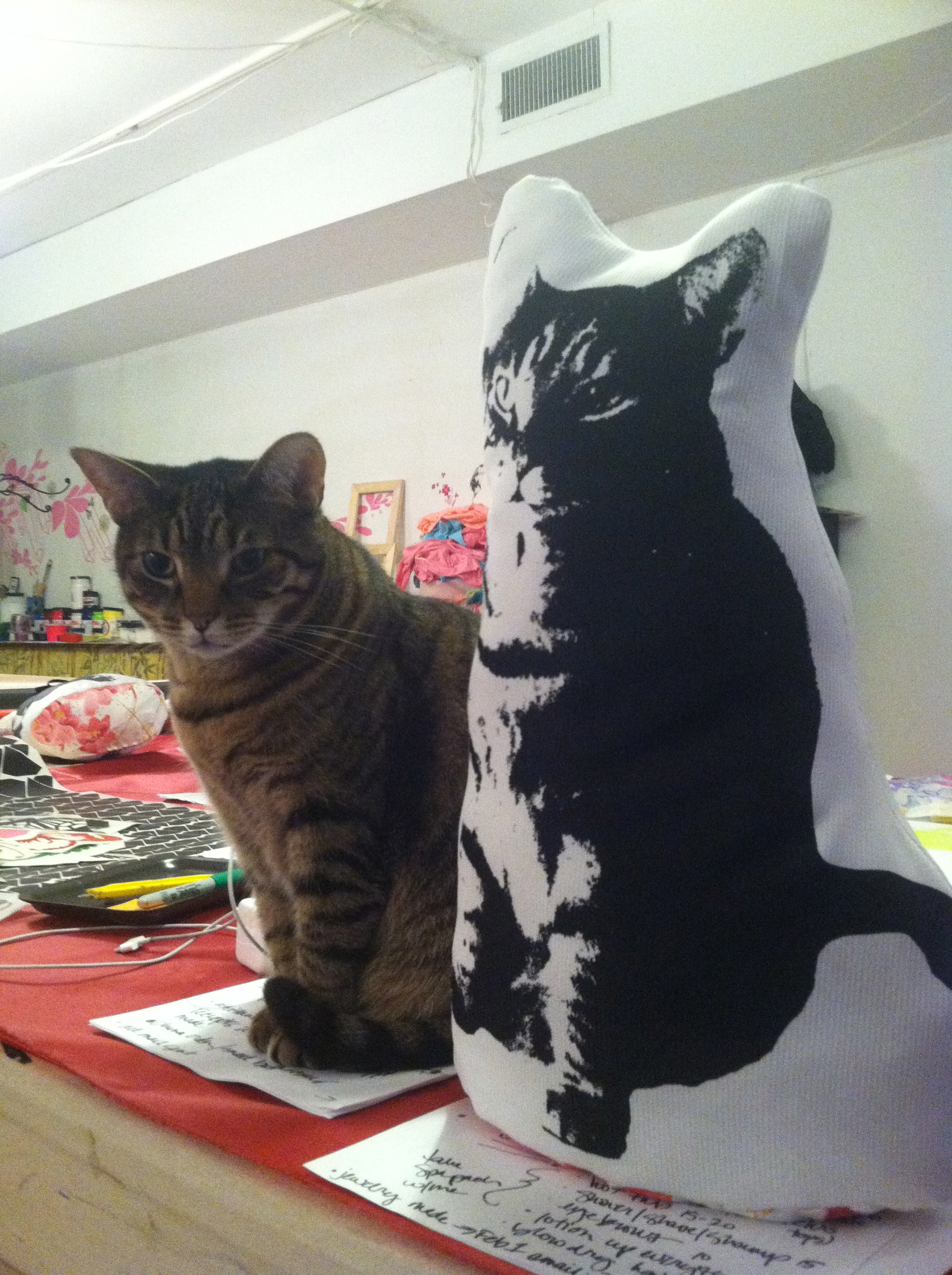 KATZ! and her pillow likeness- so cute!