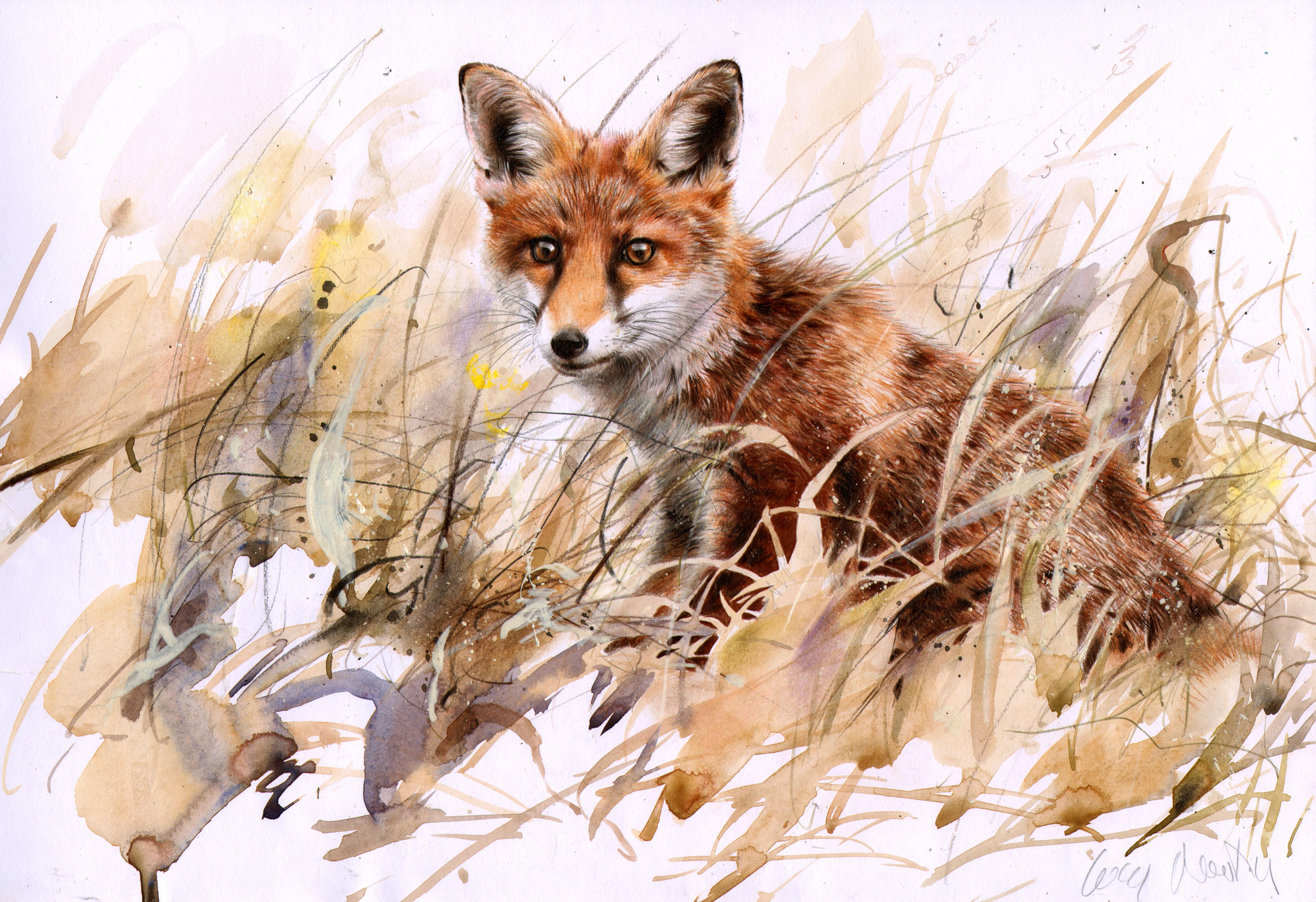 Fox Cub  LUCY NEWTON
