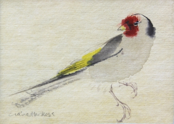 Goldfinch CLAIRE HARKESS RSW