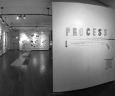 Process - gallery ID