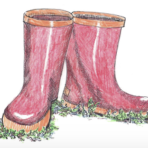Illustration of pink rubber boots - Credit: Peg Herring