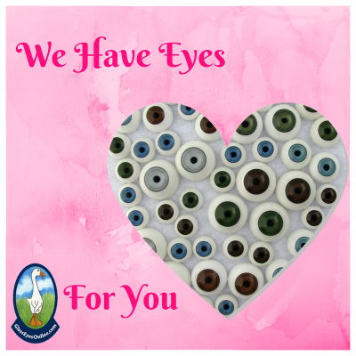 Plastic Doll Eyes