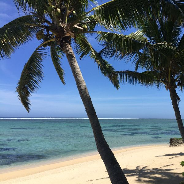 Coral Coast beach