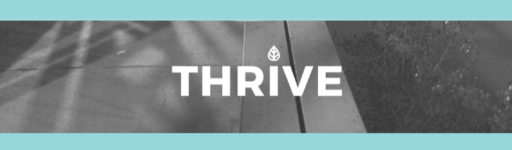 THRIVE: Medicine Hat & Region Strategy To End Poverty & Increase Wellbeing