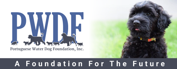 Portuguese Water Dog Foundation, Inc. : A Foundation for the Future