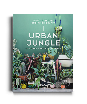 URBAN JUNGLE DECORER AVEC LES PLANTES