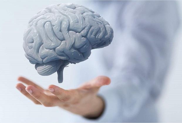 الحمل بعد سن الثلاثين وفائدته للدماغ!