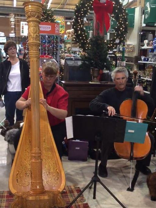 Harpist Nancy Grace