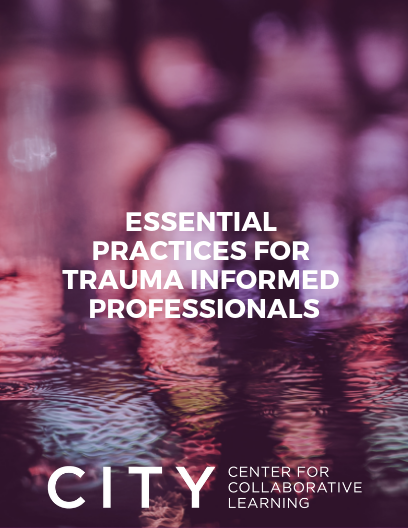 Essential Practices for Trauma Informed Professionals