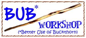 BUB Workshop image