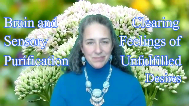 Brain and Sensory Purification - Clearing Feelings of Unfulfilled Desires