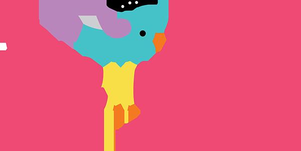 Stellybelly Newsletter
