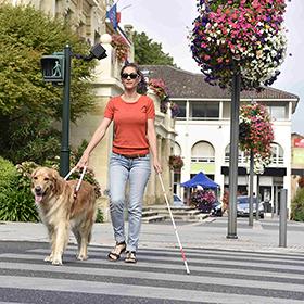 blinde vrouw steekt straat over met geleidehond