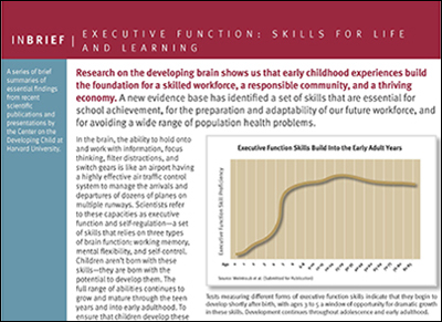 InBrief: Executive Function: Skills for Life and Learning